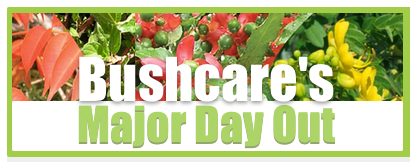 Bushcare's major day out