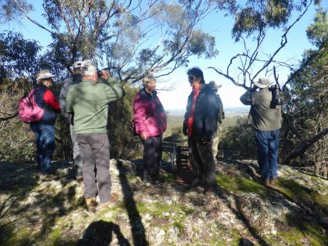 MFN group at the lookout