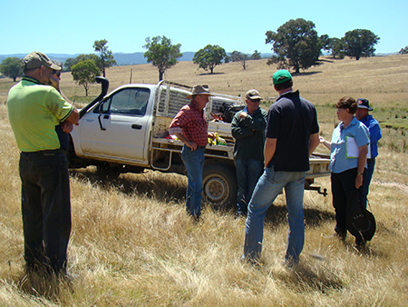 Integrated weed management field day